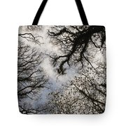 Overhead Trees In Exmoor, United Kingdom Tote Bag