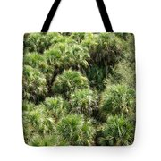 Overhead View Tote Bag