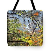 Overlooking The Gorge Tote Bag