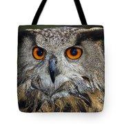 Owl Bubo Bubo Portrait Tote Bag