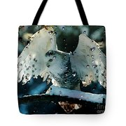 Owl In Snow Tote Bag