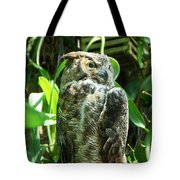 Owl Portrait 2 Tote Bag