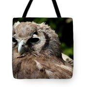 Owl Portrait Tote Bag