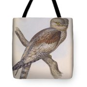 Owl Steanorninae Tote Bag