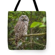 Up - Owl Tote Bag