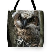 Owlet On The Watch Tote Bag