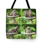 Owls Do Take Baths Tote Bag