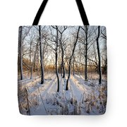 Oxbow Park Golden Hour Tote Bag