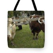 Oxen Tote Bag