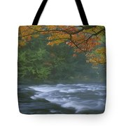 Oxtongue River Provincial Park, Dwight Tote Bag