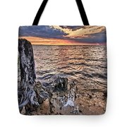 Oyster Bay Stump Sunset Tote Bag