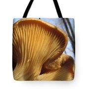 Oyster Mushroom Macro Tote Bag