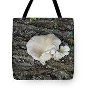 Oyster Mushroom Tote Bag