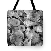 Oyster Shells Tote Bag