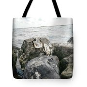 Oysters On The Rocks Tote Bag