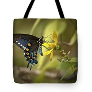 Ozark Spicebush Swallowtail On Sunflower Tote Bag