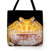 Pac Man Frog Ceratophrys On A Rock Tote Bag