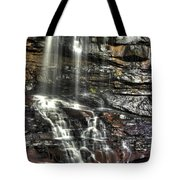 Pachinko - Blackwater Falls State Park Wv Autumn Mid-morning Tote Bag