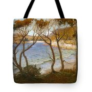 Pacific Beaches Tote Bag