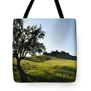 Pacific Coast Oak Malibu Creek Landscape Tote Bag