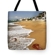 Pacific Coast Of Mexico Tote Bag