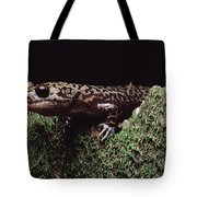 Pacific Giant Salamander On Mossy Rock Tote Bag