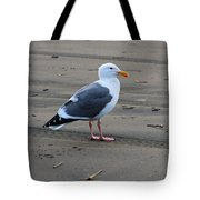Pacific Seagull Tote Bag