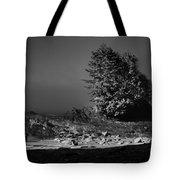 Pacific Shore Juan De Fuca Park Tote Bag