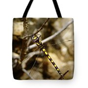 Pacific Spiketail Dragonfly On Mt Tamalpais Tote Bag