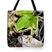 Pacific Tree Frog 2a Tote Bag