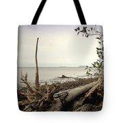Pacific Vista Tote Bag