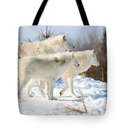 Pack Of Arctic Wolves Tote Bag