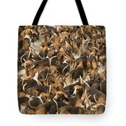 Pack Of Hound Dogs Tote Bag