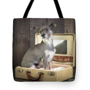 Packed And Ready To Go Tote Bag by Edward Fielding