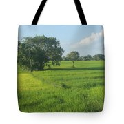 Paddy Fields 2 Tote Bag