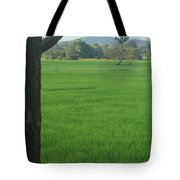 Paddy Fields 3 Tote Bag