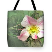 Paint Mines Wild Rose Tote Bag