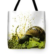 Paint Sculpture And Snail 2 Tote Bag