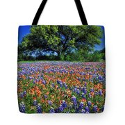 Paintbrush And Bluebonnets - Fs000057 Tote Bag by Daniel Dempster