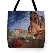 Paintbrush And The Organ Rock Tote Bag by Tim Fitzharris