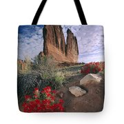 Paintbrush And  Organ Rock Tote Bag