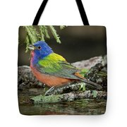 Painted Bunting Drinking Tote Bag