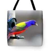 Painted Bunting - Img 9755-004 Tote Bag