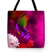 Painted Buterfly Tote Bag