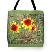 Painted Daisies Tote Bag