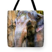 Painted Elephant Tote Bag