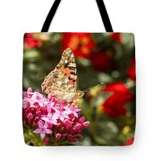 Painted Lady Butterfly Tote Bag by Eyal Bartov