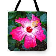 'painted Lady' Hibiscus Tote Bag