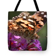 Painted Lady On Butterfly Bush Tote Bag by William Selander