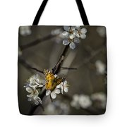 Painted Lady On Wild Plum Tote Bag